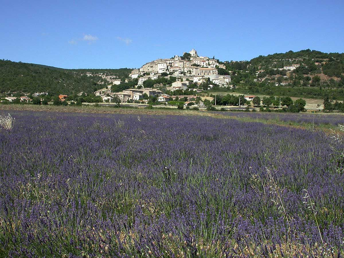 Bed and breakfast alpes de haute provence bed and for Haute provence
